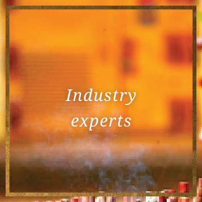 3.Industryexperts